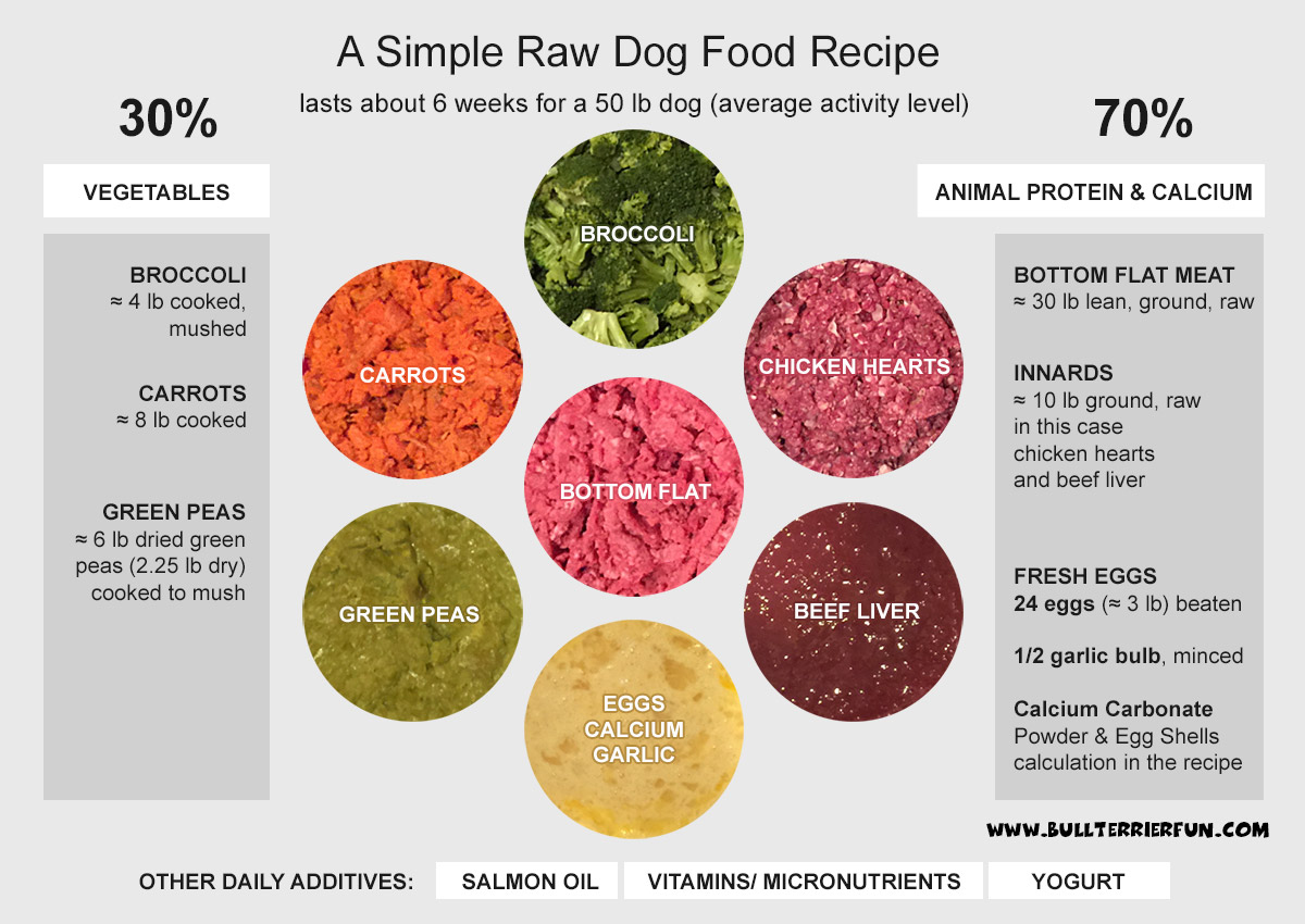 Djammys homemade raw dog food recipe strictly bull terriers dogfoodg 2132k forumfinder Choice Image
